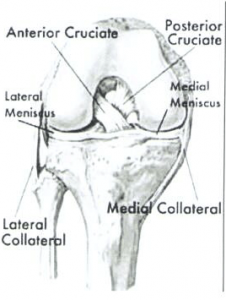 ACL/ MCL Injuries | Arthroscopic & Orthopaedic Doctor | Dr